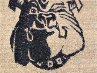 Custom entrance mat